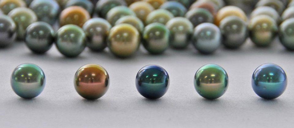perle de pierre lunel good dbut du procs de lunel with perle de pierre lunel perle de pierre. Black Bedroom Furniture Sets. Home Design Ideas